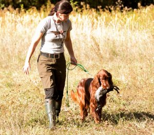 Owen mit Frauchen beim Training